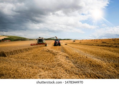 combine harvester in action and transferring the seeds in the trailer of a tractor