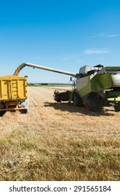 combine harvester agriculture machine emptying wheat tank in tractor trailer