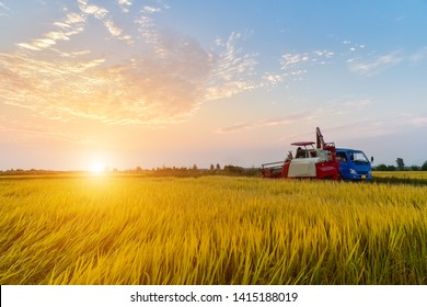 combine harvester in autumn rice paddy at dusk