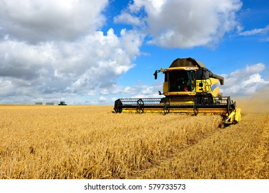 Combine Harvester Cutting Wheat, Tractor with Trailers on the Horizon