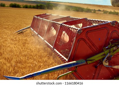 from the combine harvester flies chopped straw, after harvesting wheat