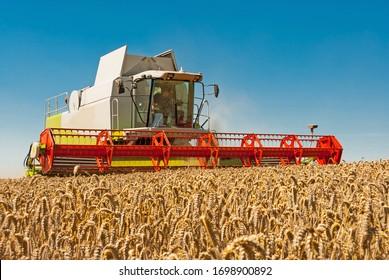 Combine harvester at the grain harvest
