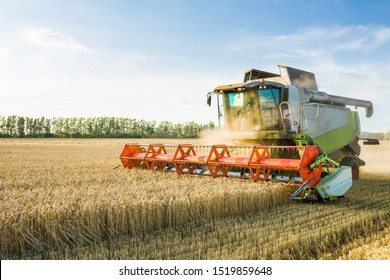 Combine harvester harvesting ripe golden wheat on the field. The image of the agricultural industry - Shutterstock ID 1519859648