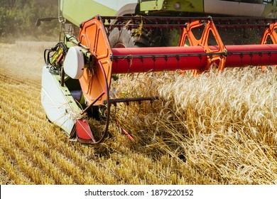 Combine harvester harvests ripe wheat. Ripe ears of gold field on the sunset cloudy orange sky background. . Concept of a rich harvest. Agriculture image - Shutterstock ID 1879220152
