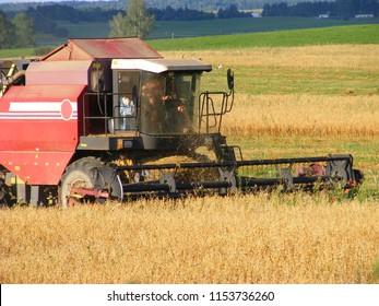 Combine harvester in oast field