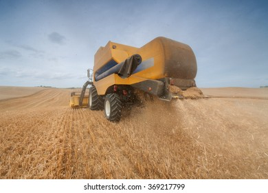 Combine harvester on the wheat field during harvest