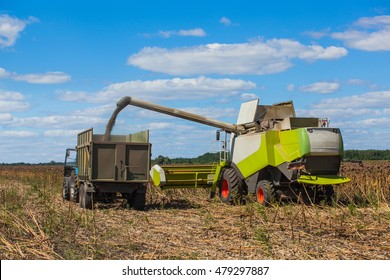 Combine harvester overloads sunflower seeds in a tractor trailer on the field, during the autumn harvest.