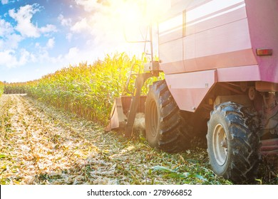 combine harvester in process of harvesting maize corn very close up view agricultural concept