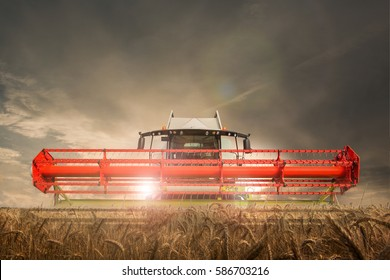 Combine harvester stands on cereal field
