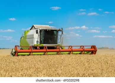 Combine harvester threshes wheat on the field, Russia