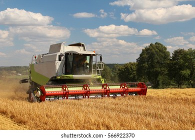 Combine harvests grain in hot sunny day with blue cloudy sky, side perspective, fertilized barley field with bio agriculture license, straw in rows, dust in air