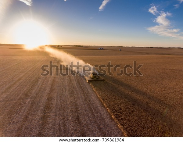 Combine at nightfall cutting corn in a field in midwest United States