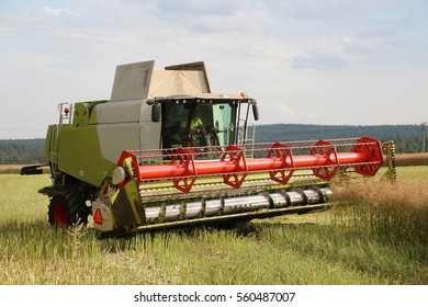 Combine in oilseed rape field turning on headland, summer harvest, front perspective