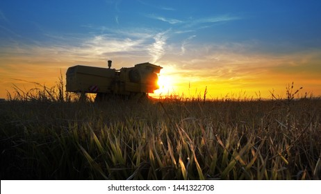 Combine tractor in field harvesting at sunset, cinematic steadicam shot