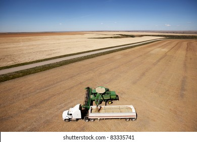 A combine unloading a harvest of lentils onto a truck on the prairie