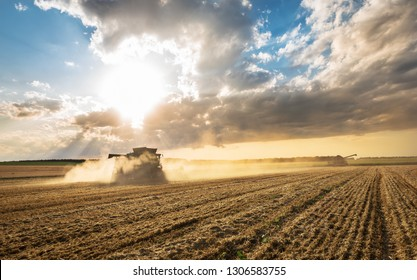 Combine working on a wheat field. Combine harvester in action on wheat field.