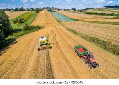 Combine-harvester and tractor with trailer in the field of grain during harvest. Aerial view from drone