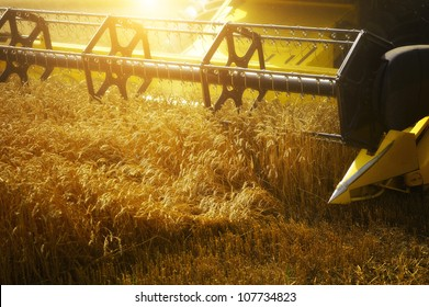 Combiner harvesting the wheat field at sunset