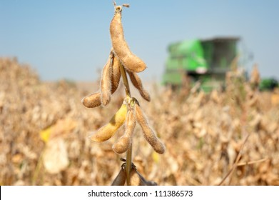 combines a field of soybeans