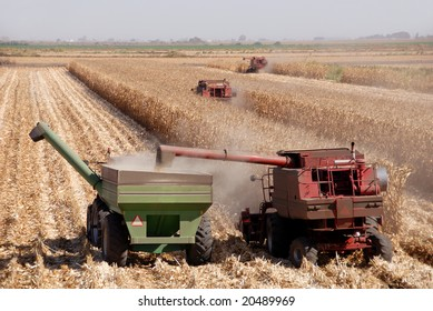Combines harvesting corn, San Joaquin Valley, California