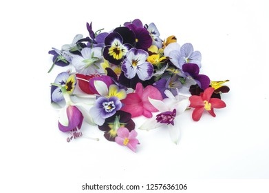 Comestible flowers and plants for restaurants