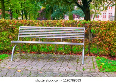 comfortable bench in autumnal park