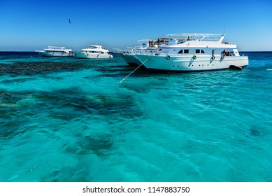 comfortable yachts are anchored on the blue sea