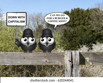Comical contradictory anti capitalism bird protesters perched on a countryside fence demonstrating