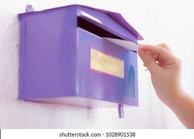 Comment show box