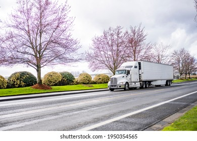 Commercial big rig white industrial long haul semi truck with turn on headlight transporting frozen cargo in refrigerator semi trailer running on the local road with blooming spring trees on the side