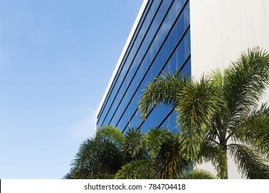 commercial building with palm trees