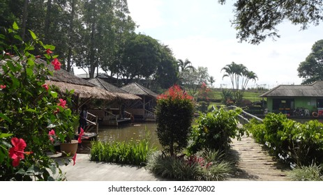 Commercial fish pond in Nusantara flower garden , cisarua, west java, indonesia. photo taken in june 2019