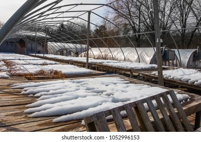 commercial greenhouse in winter