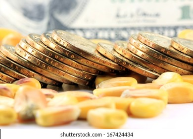 Commodity Trading Concept - Gold Coins US Currency with Yellow Corn