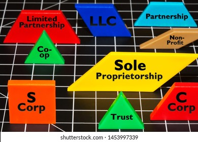 Common business entities and ventures as simple colorful shapes, LLC, Partnerships, S corp, trust, non-profit, sole proprietorship.