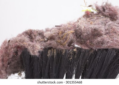 Common house dust on a brush