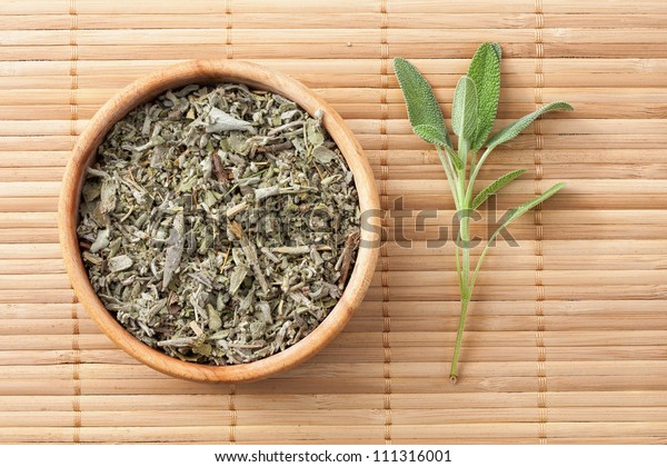 Common Sage (Salvia officinalis),fresh and dried leaves,medicinal plant