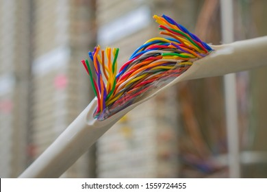 Communication breakdown is close up. Damaged insulating material of a stranded telephone wire. Gap color telecommunication cable. Concept of poor internet connection and communication problems.
