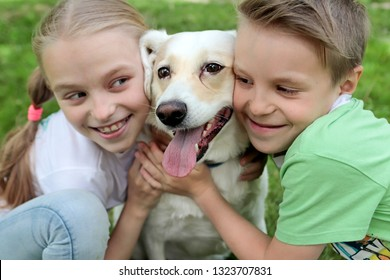 Communication of the child in the summer in nature with your beloved pet. The happiness of communicating with the dog.
