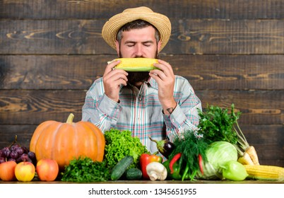 Community gardens and farms. Healthy lifestyle. Farmer hold corncob or maize wooden background. Farmer presenting organic homegrown vegetables. Homegrown organic harvest benefits. Grow organic crops.