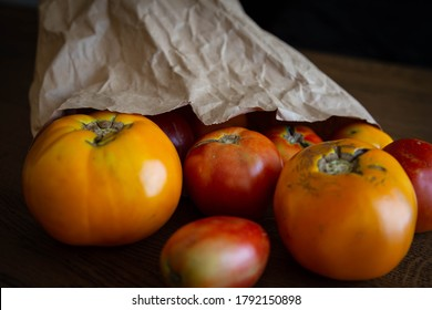 Community Supported Agriculture (CSA) paper bag of fresh organic tomatoes.