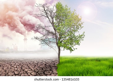 comparing green earth and effect of air pollution from human action, glbal warming concept, green tree and green earth with light and arid land with air pollusion at background