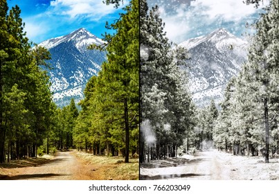 Comparison photo of the same scene in Flagstaff Arizona in the summer and the winter seasons