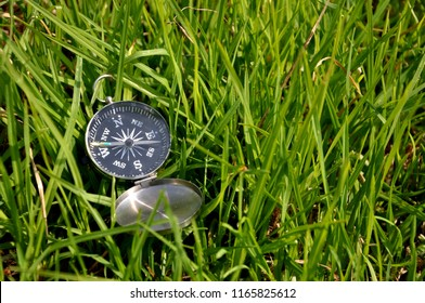 Compass in the grass, orientation and navigation concept