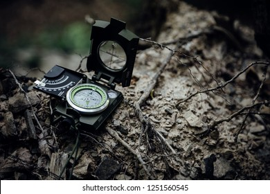 The compass in the nature.