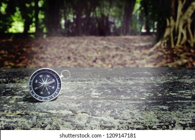 Compass on the floor in the forest and the trees.Concept for get lost,travel and hikes.