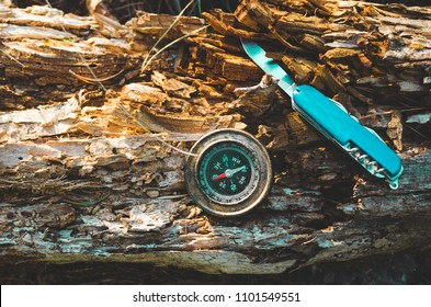 Compass and survival knife on an old rotten stump.A tool for Hiking and survival.