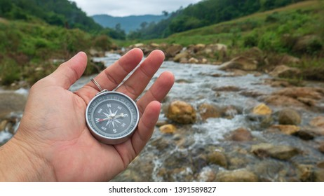 Compass and wandering concept in the forest