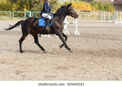 Competitor in a show jump taking her course. Equestrian sport background
