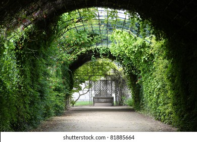 Compiegne - castle gardens in Picardy region, France. Mysterious park tunnel.
